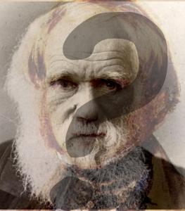 Où est Darwin ? Qui est-il ?